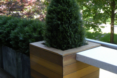 Artificial Cedar bone and bushes on a condo terrace in downtown Toronto