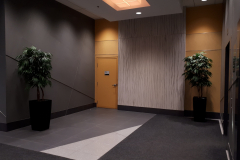 Artificial Weeping Ficus trees warm up this Ottawa office tower elevator lobby