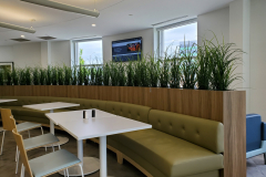 Artificial grasses in a Mississauga office cafeteria
