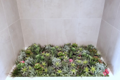 Artificial succulent garden adds interest to an alcove in this Liberty Village condo common area.