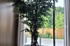 Custom built 8ft artificial Ficus benjamina tree graces an alcove in this new luxury condo lobby in Toronto