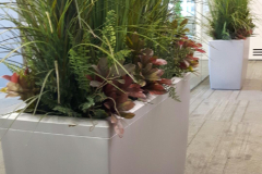 Large mixed grass arrangements brighten up a dark boardroom