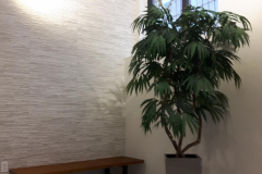 Artificial Weeping Ficus Tree in Lechuza Cubico container. Great solution for a low light foyer.
