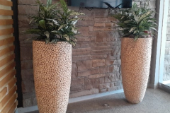 Artificial Chinese Evergreen plants (Aglaonema Silver Queen) in unique tall planters add  greenery to this Caledon office entrance.