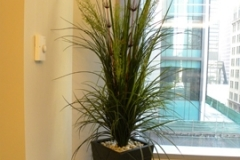 Artificial grasses including river rock top-dressing in a Vaughan office