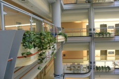 Assorted artificial plants used in multi-level atrium in Toronto