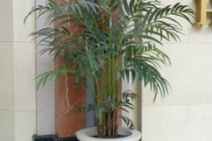 8 foot tall artificial Kentia Palm tree decorates entrance of a large entertainment complex