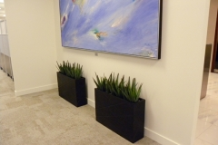Small artificial Agave plants in  narrow modern containers in a Toronto office