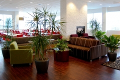 Tropical plants add ambience to the lounge area of a Vaughan office