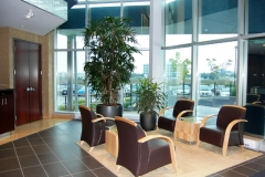 Interior landscaping in a Toronto office lobby