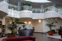 Toronto corporate office reception area displaying indoor tropical plants including large Kentia Palms