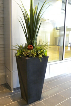Artificial Interior Office Plants Products Moore Park
