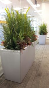 Artificial plants, artificial grassed