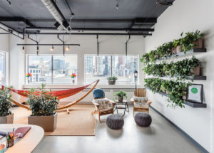 Designing with Plants - plants enhance an office collaboration area
