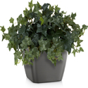 Artificial Tabletop English Ivy Plant