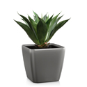 Artificial Tabletop Agave Plant