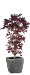 Artificial Red Japanese Maple Classic