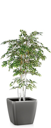Artificial White Birch Tree Classic