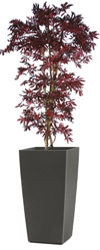 Artificial Red Japanese Maple 7ft