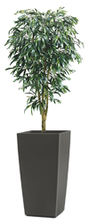 Artificial Weeping Fig Tree 7ft