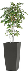 Artificial White Birch Tree 7ft