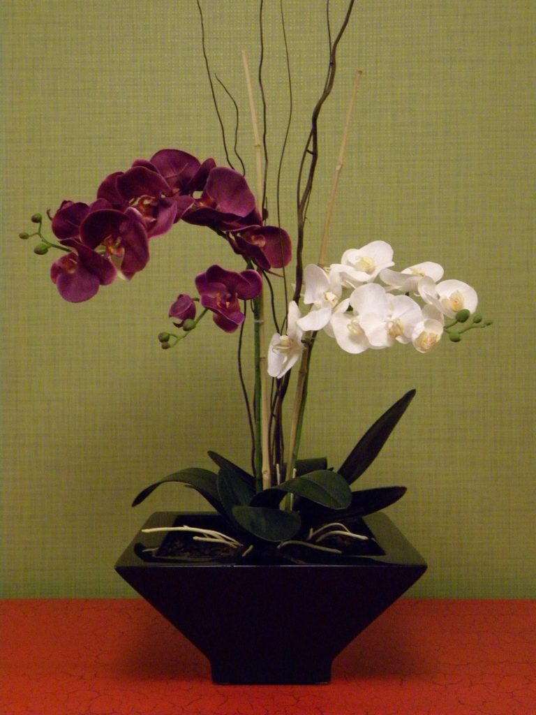 Phalaenopsis orchid artificial