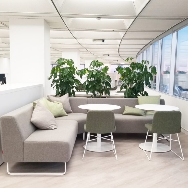 Welcome employees back to the office, physical distancing with plants